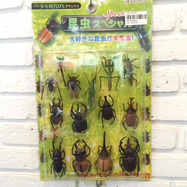 โมเดลแมลง No. 1