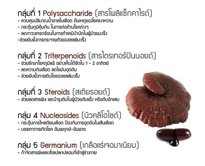 สรรพคุณ :: บำรุงระบบหัวใจและหลอดเลือด , ระบบประสาท-สมอง, บำรุงตับ,บำรุงไต, ลดไขมันในเลือด ,โคเลสเตอรอล, เบาหวาน, แก้ภูมิแพ้, ต้านอนุมูลอิสระ ชะลอความแก่ ผิวพรรณดี และที่สำคัญมาก ๆ คือมีคุณสมบัติ ปัจจุบันมีการใช้สารสกัดเห็ดหลินจือแดงร่วมกับแพทย์แผนปัจจุบัน และเพื่อช่วยลดพิษและผลข้างเคียงอันเกิดจากการใช้เคมีบำบัด ราคาพิเศษ ซื้อได้ที่ www.linhzhimin2u.com โทร.089-071-8889