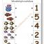 แบบฝึกทักษะการนับจำนวนและตัวเลข นับภาพและโยงเส้นจับคู่ตัวเลข (ระดับ อ. 1 ขึ้นไป) thumbnail 3