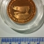 ชุดเหรียญที่ระลึกปฏิทินวันหยุด (ปีกุน) ปี พ.ศ. 2550 ขัดเงาทอง เงิน นาก thumbnail 8