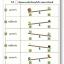 แบบฝึกทักษะการเปรียบเทียบน้ำหนัก เลือกภาพที่หนักกว่าหรือเบากว่า (ระดับ อ. 1 ขึ้นไป) thumbnail 2