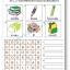 แบบฝึกทักษะการสังเกตและภาษาอังกฤษ หาคำศัพท์ที่ซ่อนอยู่ในตาราง (ระดับ อ. 3 ขึ้นไป) thumbnail 6