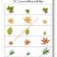 แบบฝึกทักษะการสังเกตและเรียงลำดับ หาภาพที่เล็กที่สุด (ระดับ อ. 1 ขึ้นไป) thumbnail 5