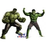 ชุดเดอะฮัค The Hulk