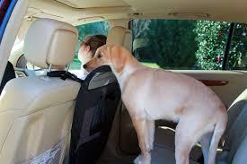 แผ่นแบริเออร์กันสุนัข AUTO PET BARRIER