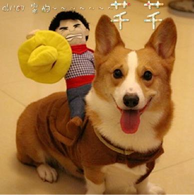 ตุ๊กตาคาวบอยบนหลังสุนัขหรือแมว