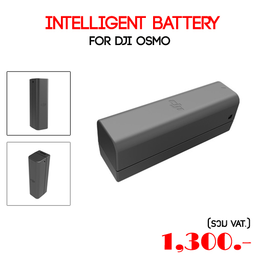 Intelligent Battery