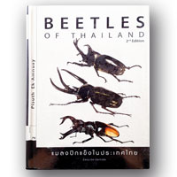Beetles of Thailand