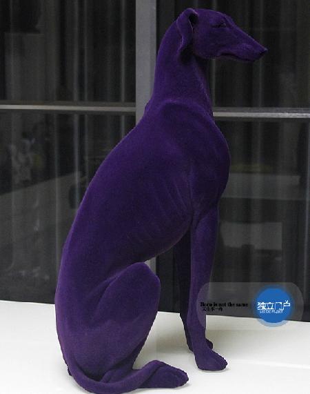 สุนัขกำมะหยี่ Greyhound