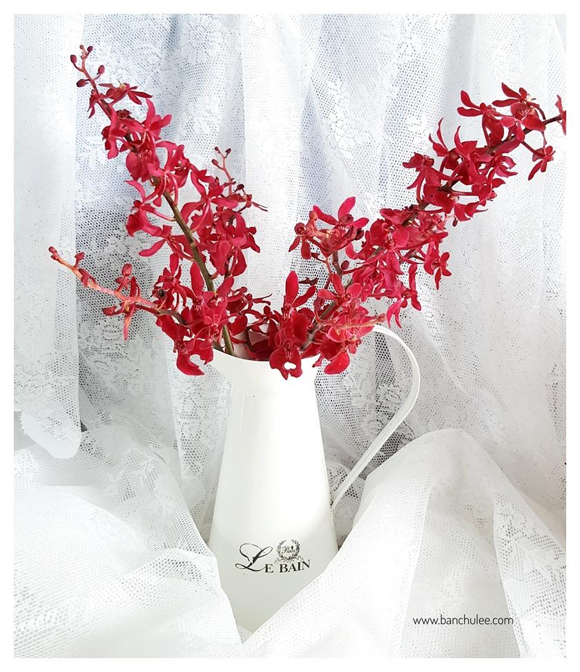 Shabby Chic Enamel Vase แจกันอีนาเมล สีขาว ทรงเหยือก