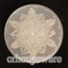 พิมพ์วุ้นลาย-ดอกไม้ 016-WON-09 Jelly Flower Mold. 016-WON-09