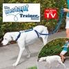 เชือกฝึกจูงสุนัข instant trainer