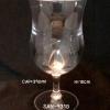 แก้วน้ำพลาสติกริมสระน้ำ Glass plastic poolsid. SAN-9310