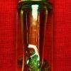 น้ำมันว่านดอกทองพิศวาสมหาหลง รุ่นพิเศษ ๑