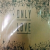 Only Love by จิมมี่่่ (บีนxฮัท) มัดจำ 450 ค่าเช่า 90 บาท