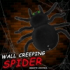 แมงมุมบังคับวิทยุไต่กำแพง