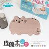 พรมเช็ดเท้าหินญี่ปุ่นลายแมว