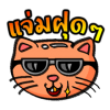 หัวแมว ดราม่า
