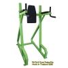 Vertical Knee Raise/Dip Machine