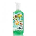 Bath & Body Works Snow-Kissed Citrus Deep Cleansing Hand Soap 236 ml. เจลล้างมือฆ่าเชื้อโรค ใช้กับน้ำ มีเม็ดสครับช่วยขัดผิวมือให้สะอาดยิ่งขึ้น มีกลิ่นหอมติดทนนาน โทนกลิ่นมะนาวหอมนุ่มๆหวานๆ เหมือนขนมกลิ่นมะนาวคะ