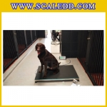 เครื่องชั่งสัตว์ เครื่องชั่งน้ำหนักสัตว์ กิโลชั่งน้ำหนักสัตว์ ชั่งน้ำหนักได้ 300 kg ค่าละเอียด 50g Pet Scales TCS-D300 300kg 50g