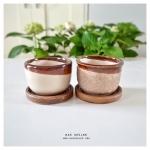Rough Ceramic Flower Pots Set A กระถางเซรามิคเนื้อหยาบ เซตเอ