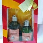 L'Occitane Aromachologie Reparing Shampoo & Conditioner Set 2016 Limited Edition เซ็ทของขวัญแชมพูและคอนดิชั่นเนอร์ พลิกโฉมผมแห้งเสียของคุณ ให้แข็งแรงและเปล่งประกายเงางาม ช่วยฟื้นบำรุงผมแห้งเสีย ด้วยน้ำมันหอมระเหย 5 ชนิด