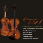 New Christina V08 Violin, High-end Professional Grading Musical instruments 4/4 Matt