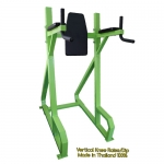 Vertical Knee Raise/Dip Machine