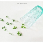 Vintage Glass Cup - Light Green