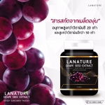 Lanature Grape Seed Extract สารสกัดแท้จากเมล็ดองุ่น ทานทุกวัน ผิวดีขึ้นอย่างเห็นได้ชัดแน่นอน