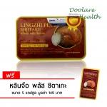 Lingzhi Plus Shiitake หลินจือ พลัส ชิตาเกะ บรรจุ 60 แคปซูล ราคา 730 บาท ส่งฟรี EMS (แถมฟรี อีก 5 แคปซูล)