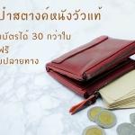 รีวิวกระเป๋าสตางค์ 2 ซิป รุ่น Contacts จากลูกค้าผู้ซื้อจริง