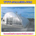 โรงอบแห้งพลังงานแสงอาทิตย์ (Solar Green House) ขนาด 8.00x20.80 เมตร พื้นที่รวม 166.4 ตารางเมตร แบบอบแห้งพพ.3 พร้อมระบบท่อส่งความร้อนเสริม SOLARDOME-PP3