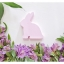 Wooden Bunny - Spring Beauty thumbnail 9