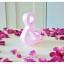 Spring Beauty - สัญลักษณ์ & (Ampersand) ตั้งโต๊ะ งานไม้สัก โทนสีชมพู thumbnail 3