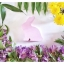Wooden Bunny - Spring Beauty thumbnail 16