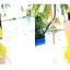 ชุดว่ายน้ำทูพีชสีเหลือง เสื้อ+กางเกง รอบอก 32-36 เอว 28-32 สะโพก 34-38 ตัวเสื้อยาว 30 นิ้วค่ะ thumbnail 3