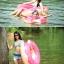 ห่วงยางแฟนซี รูปโดนัท ชมพู และสีน้ำตาล ขนาด 120cm ราคา 390 ค่ะ thumbnail 2