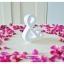 White - สัญลักษณ์ & (Ampersand) ตั้งโต๊ะ งานไม้สัก โทนสีขาว thumbnail 3