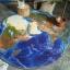 พรมปูพื้นลูกโลก thumbnail 4