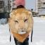 กระเป๋าเป้หัวสิงโต thumbnail 2