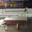 ชั้นวางถาดหลุมสแตนเลส 2 ชั้น 002-RS-002 ชั้นเสียบถาดหลุมโรงเรียนตรงมาตราฐานสาธรสุขเมืองไทย,Stainless slatted Shelves for food tray thumbnail 4