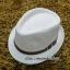 หมวกปานามาปีกสั้น หมวกสาน หมวกปานามา สีน้ำตาลอ่อน พร้อมส่งค่ะ thumbnail 1