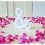 White - สัญลักษณ์ & (Ampersand) ตั้งโต๊ะ งานไม้สัก โทนสีขาว thumbnail 4