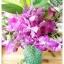 Green Glass Vase แจกันแก้วสีเขียว ลายนูน thumbnail 6