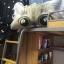 หมอนหัวเตียงหน้าแมว thumbnail 5