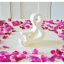 Shredded Wheat - สัญลักษณ์ & (Ampersand) ตั้งโต๊ะ งานไม้สัก โทนสีครีม thumbnail 4