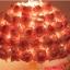 โคมไฟดอกไม้ thumbnail 2