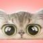 หมอนหัวเตียงหน้าแมว thumbnail 2